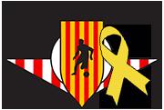 Fundació Unió Esportiva Vic